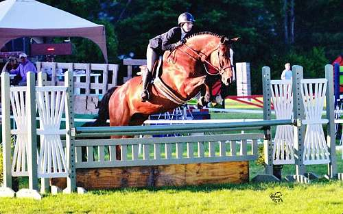 Turning Point Show Stables On Equinenow