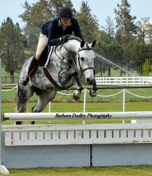 Parkwood Equestrian Center On Equinenow