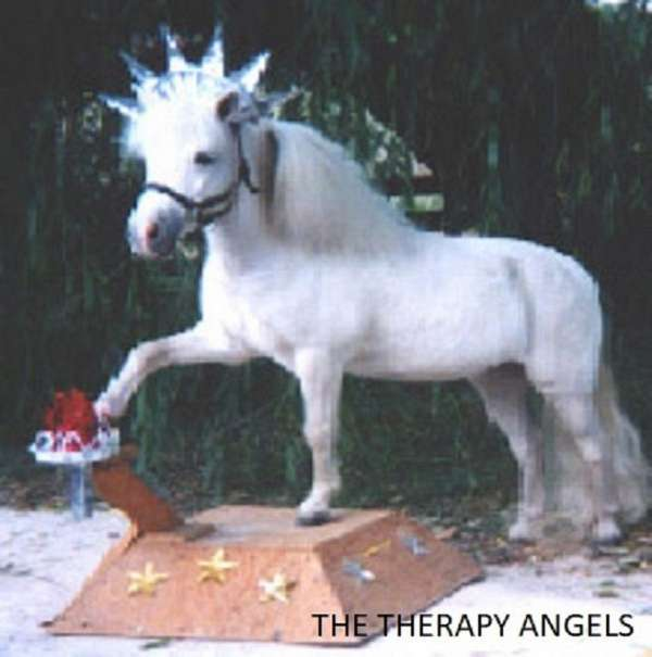 finished-miniature-horse