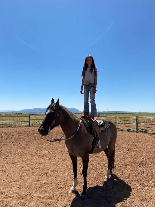 well-quarter-horse