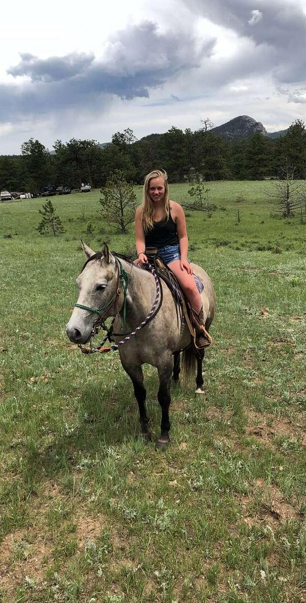 horsemanship-quarter-horse
