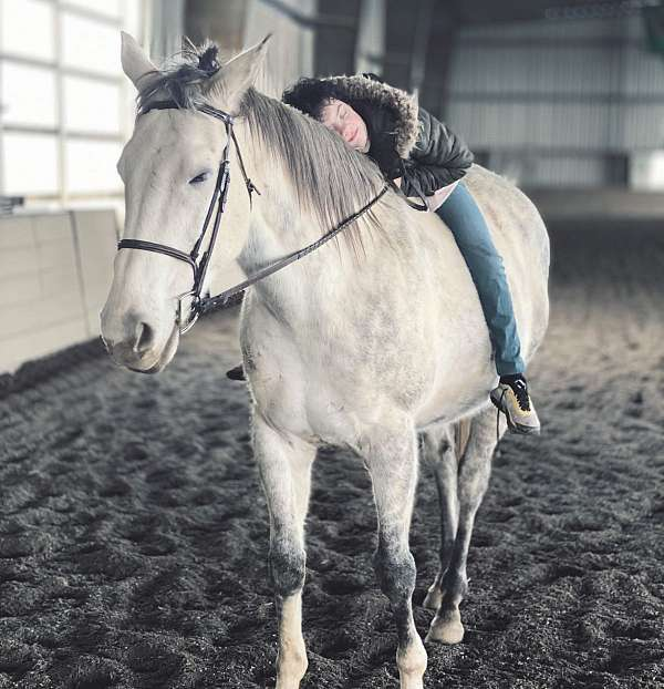horse-riding-lessons-in-maryland