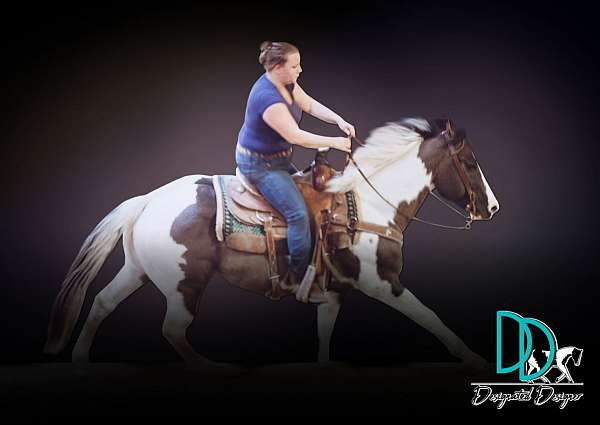tobiano-roping-horse