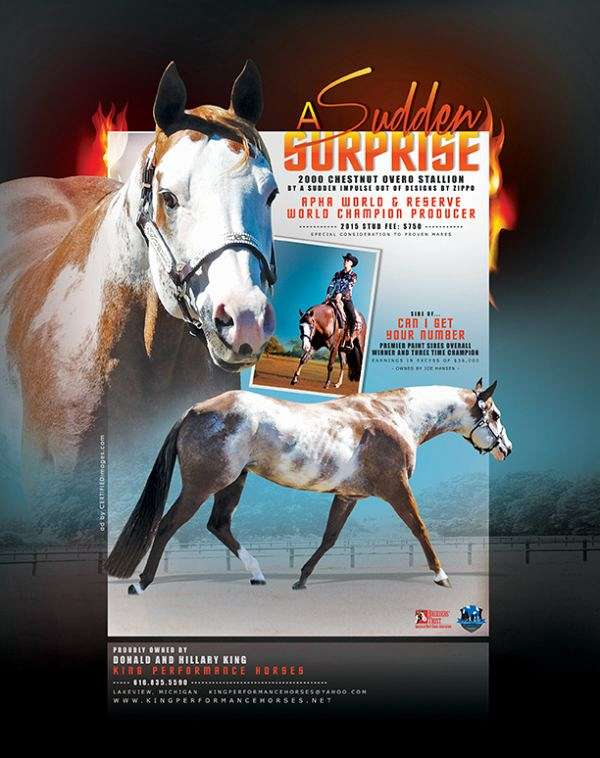 world-champion-sire-paint-horse