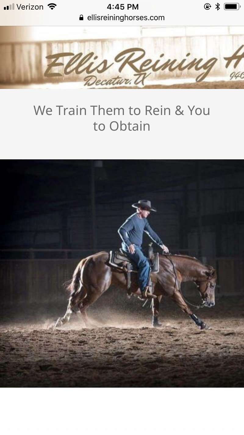 Horse Trainers In Texas